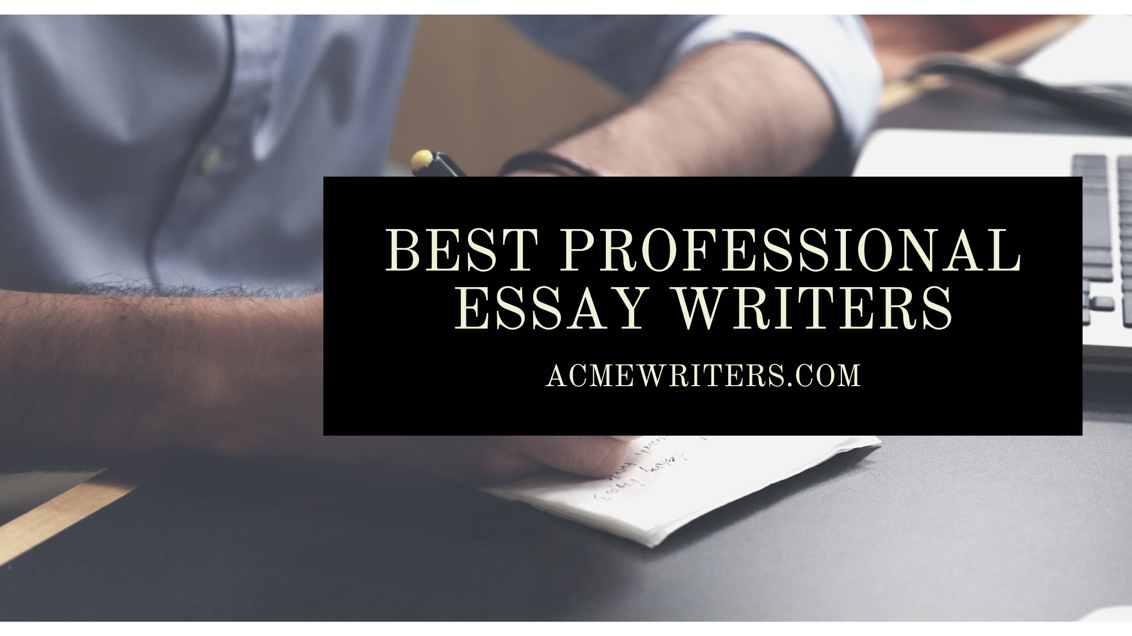 Best Professional Essay Writers